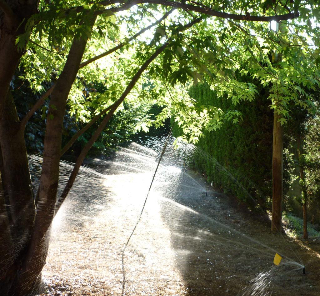 Giardini Da Incubo 2016 giardinaggio garantito – giardinaggio garantito